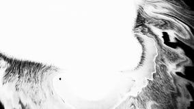 Tinta de la floración La tinta blanca hermosa de la acuarela cae la transición en fondo negro, almacen de video