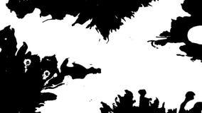 Tinta de la floración La tinta blanca hermosa de la acuarela cae la transición en fondo negro, almacen de metraje de vídeo