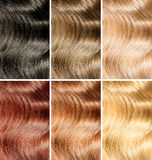 Tinta dei capelli o campioni differenti di colori della tintura impostati fotografia stock libera da diritti