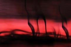 Tinta no borrão da água vermelha Fotos de Stock