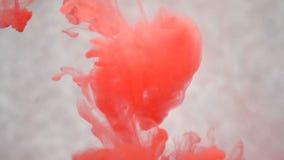 Tinta vermelha na água Movimento lento criativo Em um fundo branco vídeos de arquivo