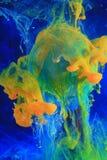 Tintas de dissolução coloridas   fotos de stock