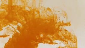 Tinte anaranjado en agua almacen de metraje de vídeo