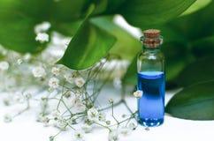 Tinte curativo de la esencia azul en el fondo de madera blanco de la tabla Petróleo esencial foto de archivo libre de regalías