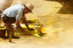 Tinte de trabajo masculino en el cuero crudo en una curtiduría pasada de moda Fotos de archivo