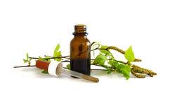 Tinte del abedul en una pequeña botella y ramas con las hojas frescas Imagenes de archivo
