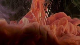 Tinte der weißen Lilie im Wasser stock footage