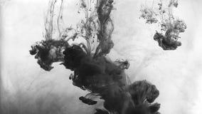 Tinte im Wasser stock video