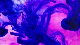 Tintenfarben im Wasser stock footage