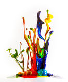 Tintenspritzen Stockfoto