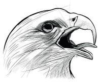 Tintenzeichnung des Langkawi-Adlers Lizenzfreies Stockbild