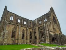 Tintern修道院废墟,一个前教会在威尔士 免版税库存图片
