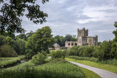 Tintern修道院-韦克斯福德郡-爱尔兰 免版税库存图片