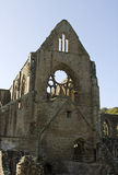 Tintern abbey Stock Photos