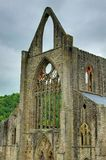 tintern abbey Royaltyfria Foton