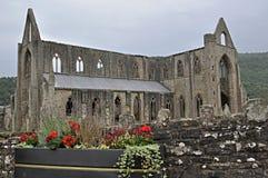 tintern abbey Arkivbild