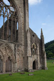 Tintern abbey cathedral ruins. Royalty Free Stock Photos