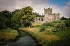 Tintern Abbey. county Wexford. Ireland. Tintern Abbey. Medieval cistercian monastery. Hook peninsula. county Wexford. Ireland stock photos