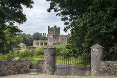 Tintern Abbey - County Wexford - Ireland Royalty Free Stock Image