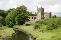 Tintern Abbey, Ireland Royalty Free Stock Photos