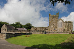 Tintern Abbey, Ireland Stock Images