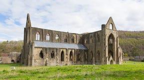 Tintern Abbey Monmouthshire nära Chepstow Wales UK fördärvar av Cistercian kloster Royaltyfri Bild