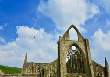The splendour of the abbey. Tintern Abbey Monmouthshire Wales united kingdom royalty free stock images