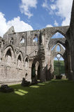 Tintern Abbey Nave in Wales Royalty Free Stock Photography