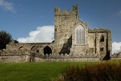 tintern abbey ståndsmässiga Wexford ireland Arkivfoton