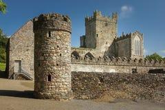 tintern abbey ståndsmässiga Wexford ireland Royaltyfria Bilder