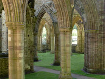 Tintern Abbey, Wales. Abbey showing pillars and archways in detail Stock Photo