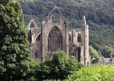Tintern abbotskloster i södra Wales, en historisk Cistercian byggnad royaltyfri foto