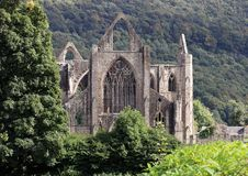 Tintern修道院在南威尔士,一个历史的Cistercian大厦 免版税库存照片