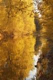 Tintes de otoño fotografía de archivo
