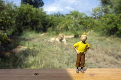 Tintin在狮子自豪感前面的行动象征  免版税库存图片