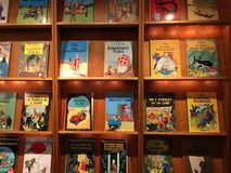 Tintinwinkel stock afbeelding