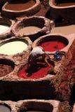 Tintura del pellame Fotografia Stock Libera da Diritti