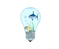 Tiny aquarium. With a fish inside an electrical bulb Stock Photos