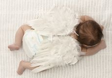 Tiny baby with angel wings Stock Photos