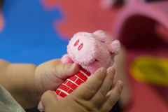 Tiny baby hands playing a pig plush toy Royalty Free Stock Photography