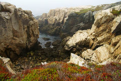 Tiny bay surrounded by light and dark rocks with red and green moss on the foreground and fog on the background. Tiny bay surrounded by light and dark rocks stock images