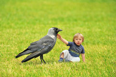 Tiny boy playing with a crow royalty free stock images