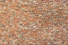 Tiny brickwall orange Stock Image