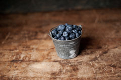 Tiny Bucket of Blueberries Royalty Free Stock Photo