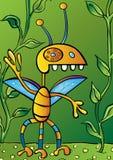 Tiny Bug Royalty Free Stock Photos
