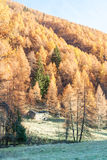 Tiny chalet in the italian Alps with a colourful panorama. Under a peak. Val camonica Royalty Free Stock Photos