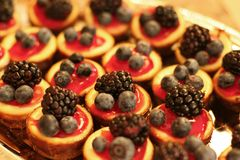 Tiny cheesecakes with berries. Tray of homemade cheesecake berry fruit tarts Royalty Free Stock Image