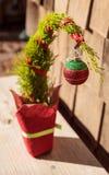 Tiny Christmas tree Royalty Free Stock Image