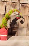 Tiny Christmas tree Stock Image