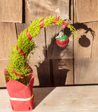 Tiny Christmas tree Royalty Free Stock Images